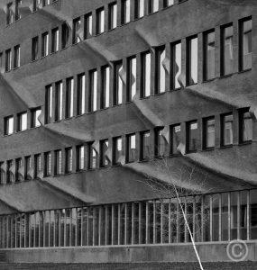 Minnaertgebouw003-boom-zw-donker