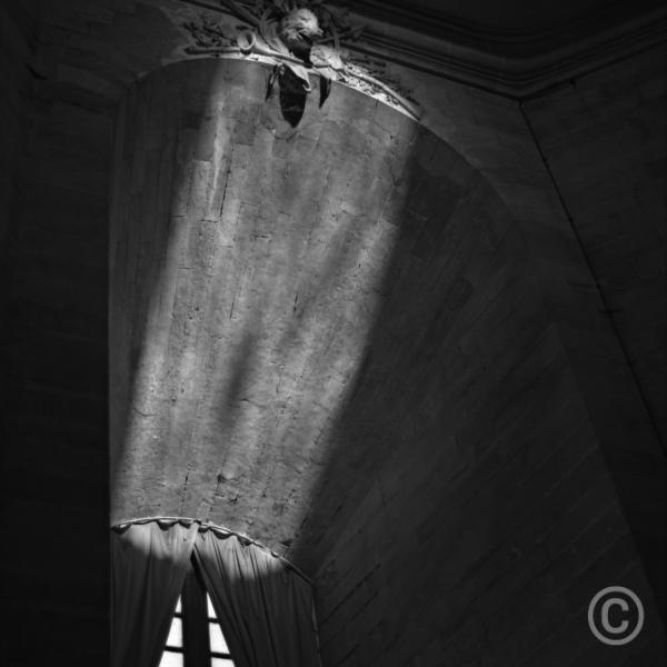Lumiere et sanglier - Musee du Cheval, Château de Chantilly © Prosper Jerominus, 2001