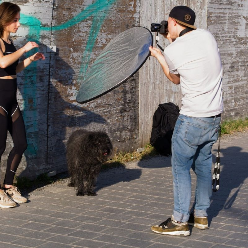 Dog checking social distance