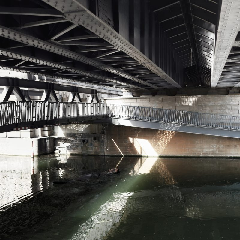 architecture, Berlin, Wildlife, Bridges